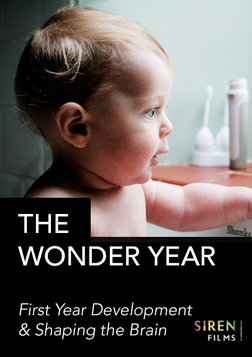 The Wonder Year - First Year Development and Shaping the Brain