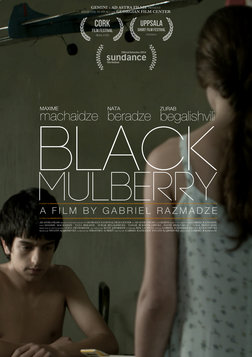 Black Mulberry - Shavi Tuta