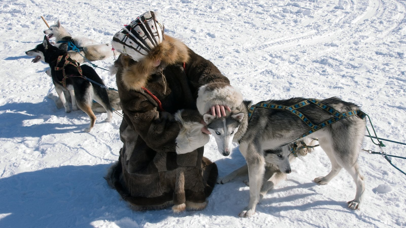 Inuit and Northern Forest Mythology