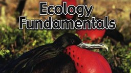 Ecology Fundamentals