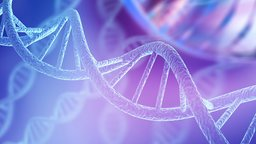 Genome Mutations: Evolution's Raw Material
